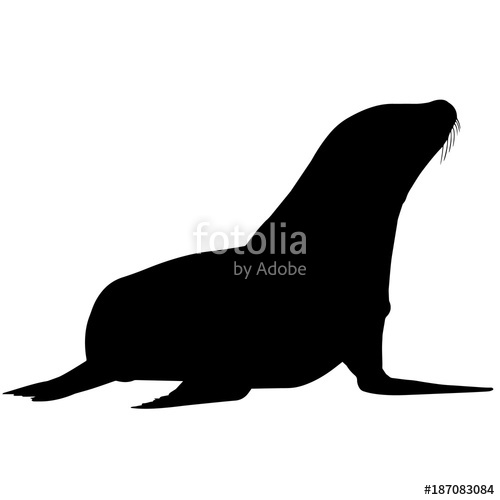 500x500 Sea Lion Silhouette Vector Graphics Stock Image And Royalty Free