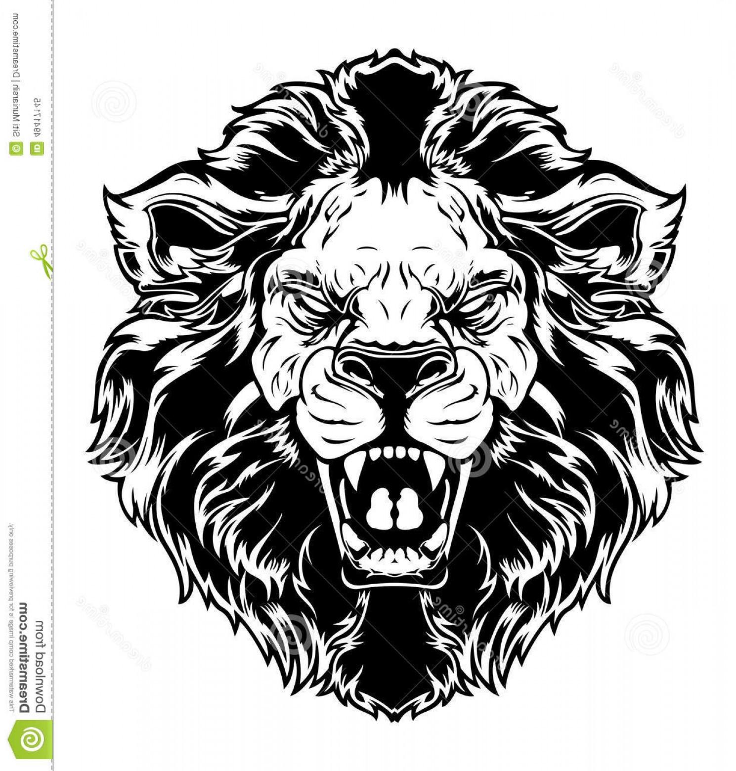 1489x1560 Stock Illustration Lion Head Vector Illustration Black White Anger