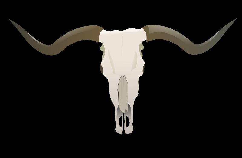 Longhorn Logo Vector at GetDrawings com | Free for personal