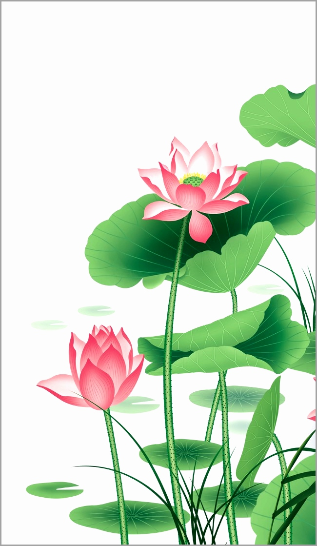 The Best Free Lotus Flower Vector Images Download From 3585 Free