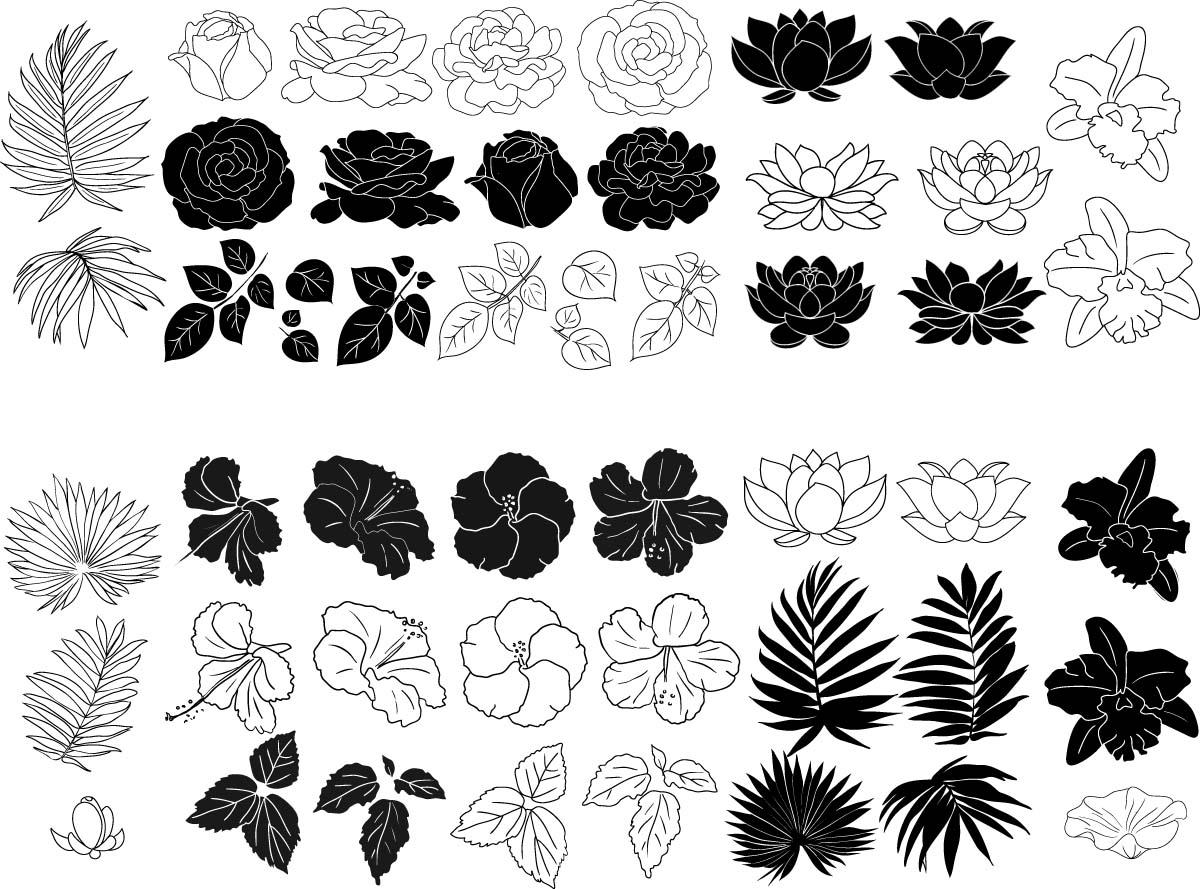 Lotus Logo Vector Free Download At Getdrawingscom Free For