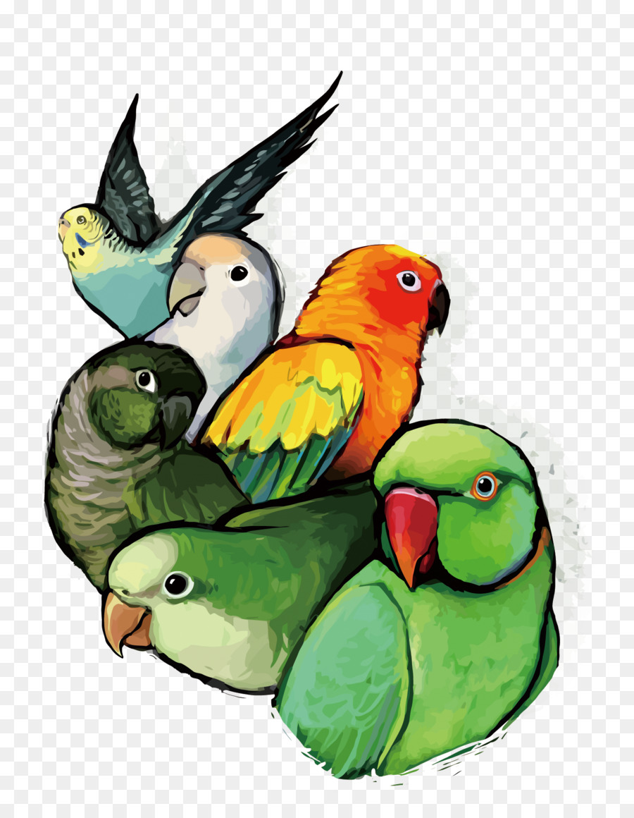 Love Bird Vector at GetDrawings com | Free for personal use
