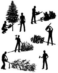193x240 Lumberjack Photos, Royalty Free Images, Graphics, Vectors Amp Videos