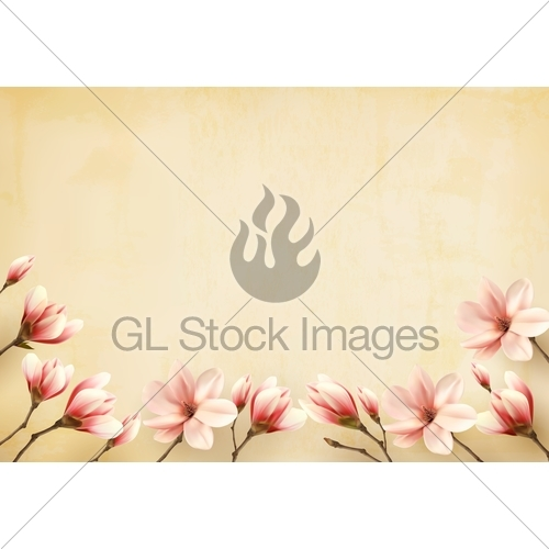 500x500 Frame Made Out Of Magnolia Flowers. Vector. Gl Stock Images