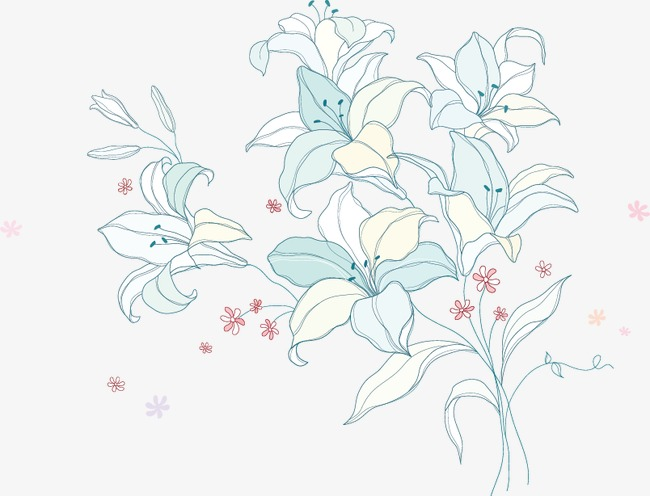 650x496 Magnolia Vector, Magnolia, Watercolor, Illustration Png And Vector