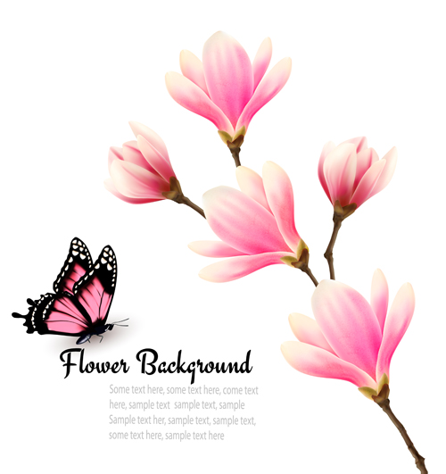 500x531 Pink Magnolia Flower Background Vector 03 Free Download