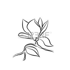 236x236 Watercolor Magnolia. Vector Art Illustration Duvara