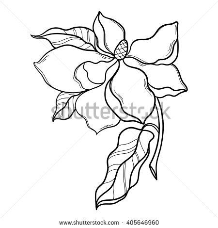 450x470 Fantasy Magnolia Flower With Leaf. Magnolia Vector Floral Artwork
