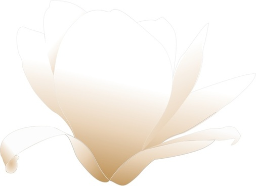 506x368 Free Vector Magnolia Free Vector Download (10 Free Vector) For