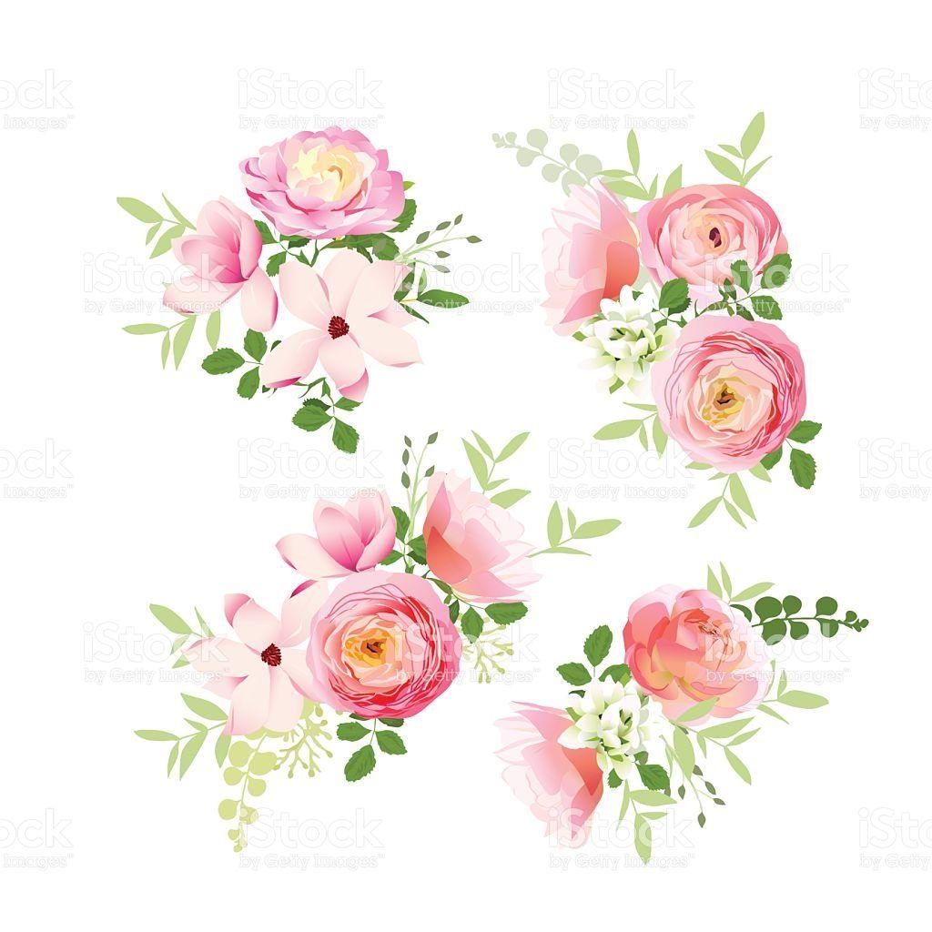 1024x1024 Wedding Bouquets Of Fresh Roses, Magnolia, Ranunculus Vector