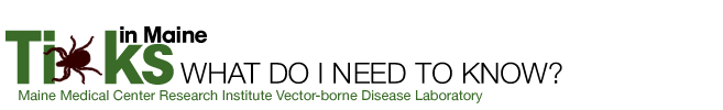 657x100 Lyme Amp Vector Borne Disease Laboratory