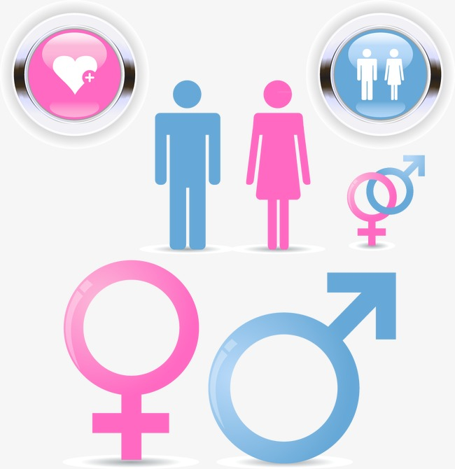 650x670 Male And Female Icon Vector Image, Vector, Male, Female Png And