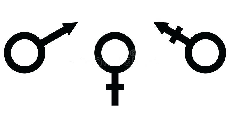 800x400 Transgender Sign Download Symbol Of Gender Equality Male Female