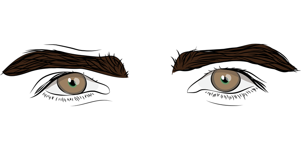 960x480 Collection Of Free Eyebrow Vector Clip Art. Download On Ubisafe