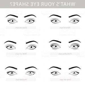 300x300 Various Types Of Woman Eyes Vector Set Gm Orangiausa