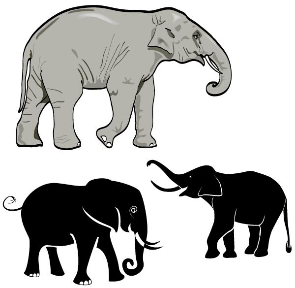 600x585 Free Free Elephant Vector Art Psd Files, Vectors Amp Graphics