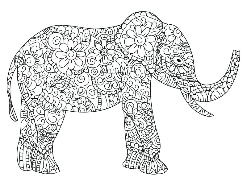800x600 Elephant Coloring Book Download Elephant Coloring Book Vector For