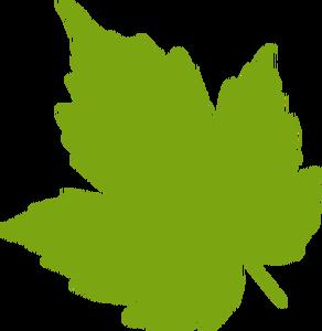 292x300 1299 Free Vector Canadian Maple Leaf Public Domain Vectors