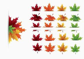 286x200 Maple Leaf Free Vector Art