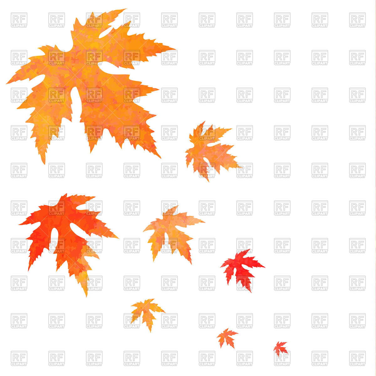 1200x1200 Watercolor Painted Orange Falling Maple Leaves Vector Image