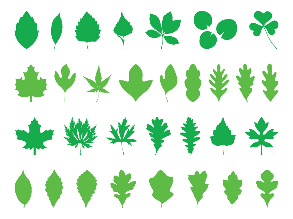 1024x765 Leaves Silhouettes Pack Vector Art Amp Graphics