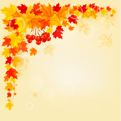500x501 Maple Leaf Vector Background Art 01 Free Download