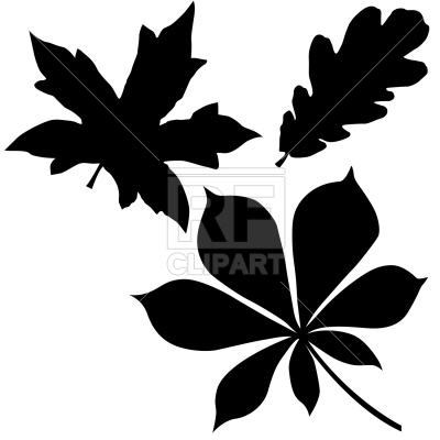 400x400 Oak, Chestnut And Maple Leaf Vector Image Vector Artwork Of