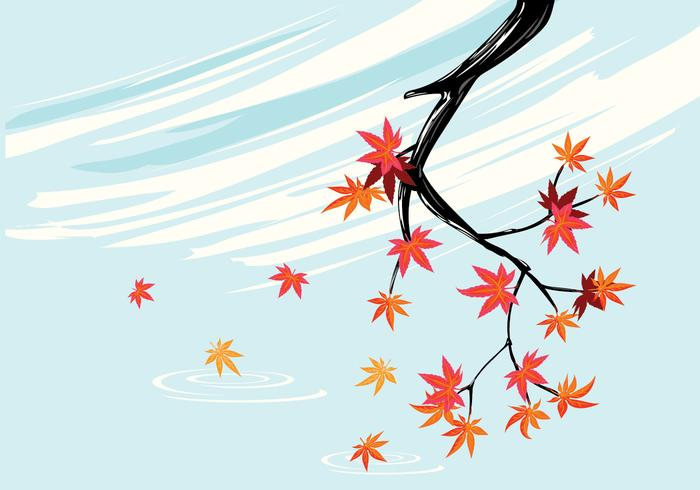 700x490 Smooth Japanese Maple Plant With Sky Background And Fall Maple