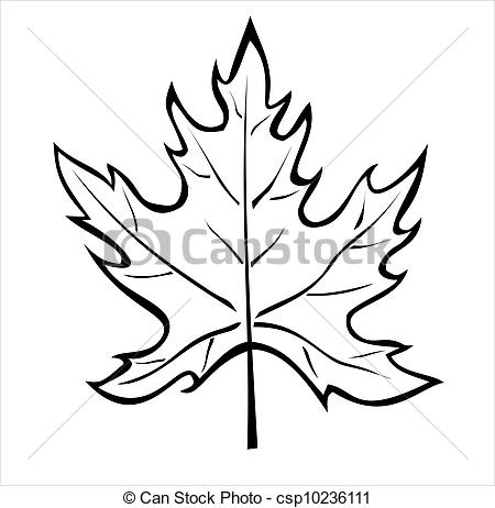 450x462 The Silhouette Of The Maple Leaf Isolated On White.
