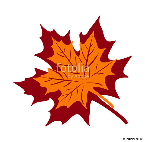 500x489 Maple Leaf Vector Illustration Stock Image And Royalty Free