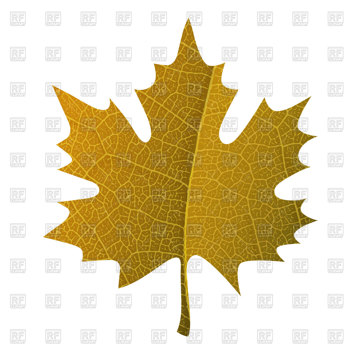 1200x1200 Orange Maple Leaf Vector Image Vector Artwork Of Signs, Symbols