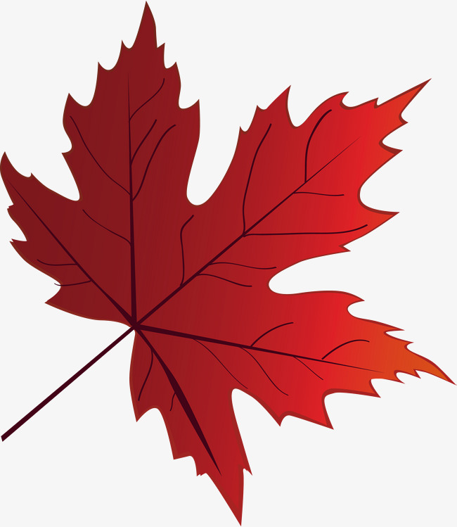 650x749 Fire Red Maple Leaf Elements, Fire Vector, Leaf Vector, Fire Red