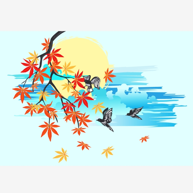 640x640 4 Seasons Maple Tree Vector Free Download, Maple Tree, 4 Seasons