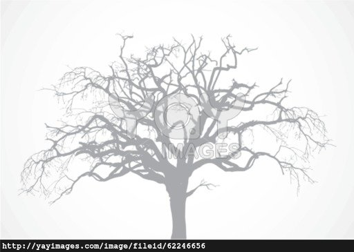 512x365 Clipart Vector Bare Maple Tree Amp Clip Art Vector Bare Maple Tree