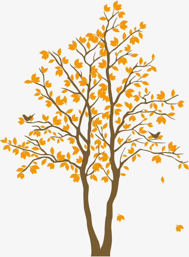 650x885 Yellow Maple Tree, Vector Maple Leaf, Big Tree, Yellow Png And