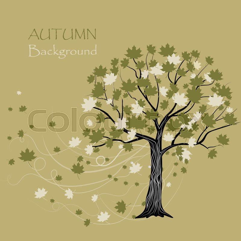 800x800 Beautiful Maple Tree On Beige Background. Vector Illustration