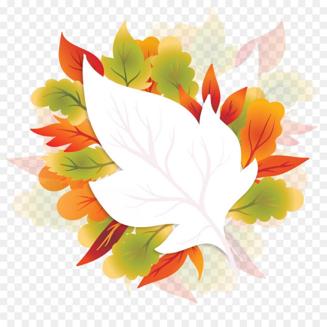 1080x1080 Png Floral Design Maple Leaf Autumn Vector Maple Autum Orangiausa