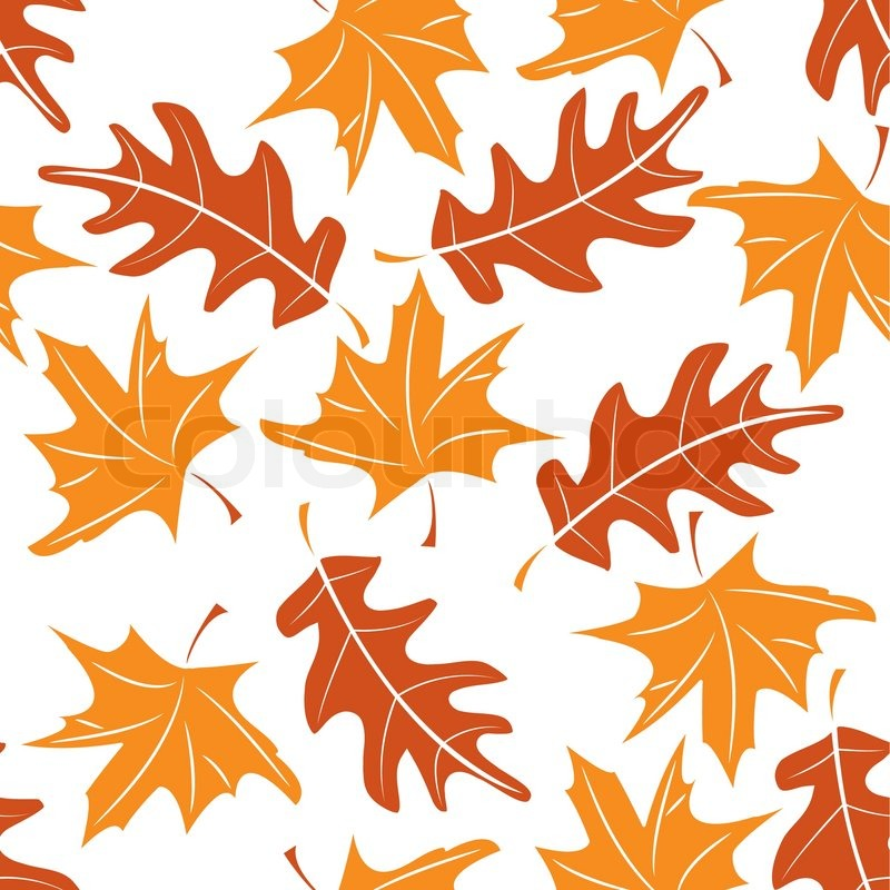 800x800 Seamless Autumnal Pattern With Maple And Oak Leaves Vector