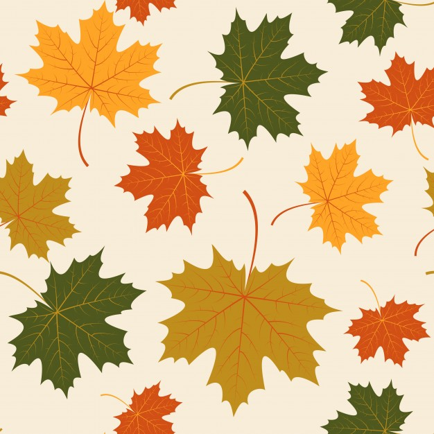 626x626 Vector Seamless With Autumn Maple Leaves Vector Free Download