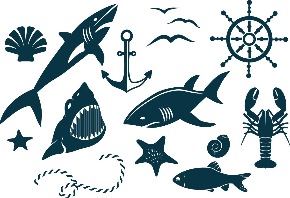 1200x818 Decorative Marine Elements Vector Free Download