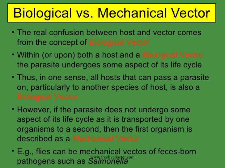 mechanical vector at getdrawings   free download  getdrawings.com