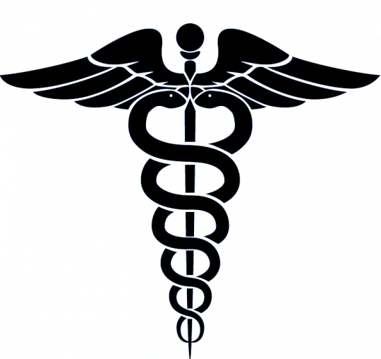 540x508 Medical Wings Medical Icon Vector Logo With Serpent, Snake