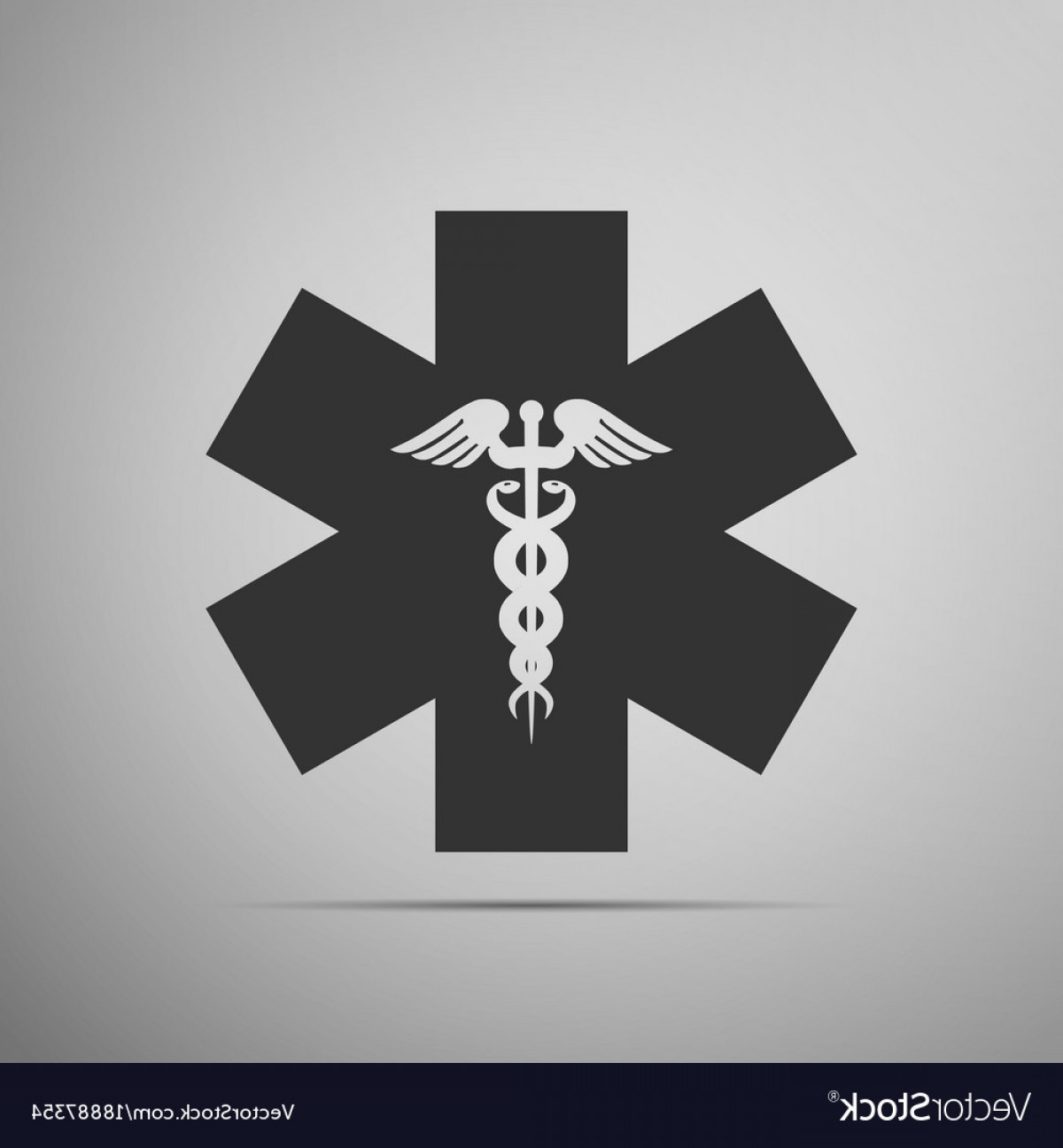 1200x1296 Emergency Star Medical Symbol Caduceus Snake Vector Rongholland