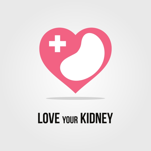 640x640 Medical Logo With Kidney, Care, Medical, Symbol Png And Vector For