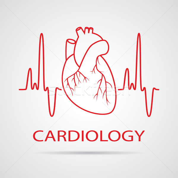 600x600 Vector Human Heart Medical Symbol Of Cardiology Vector