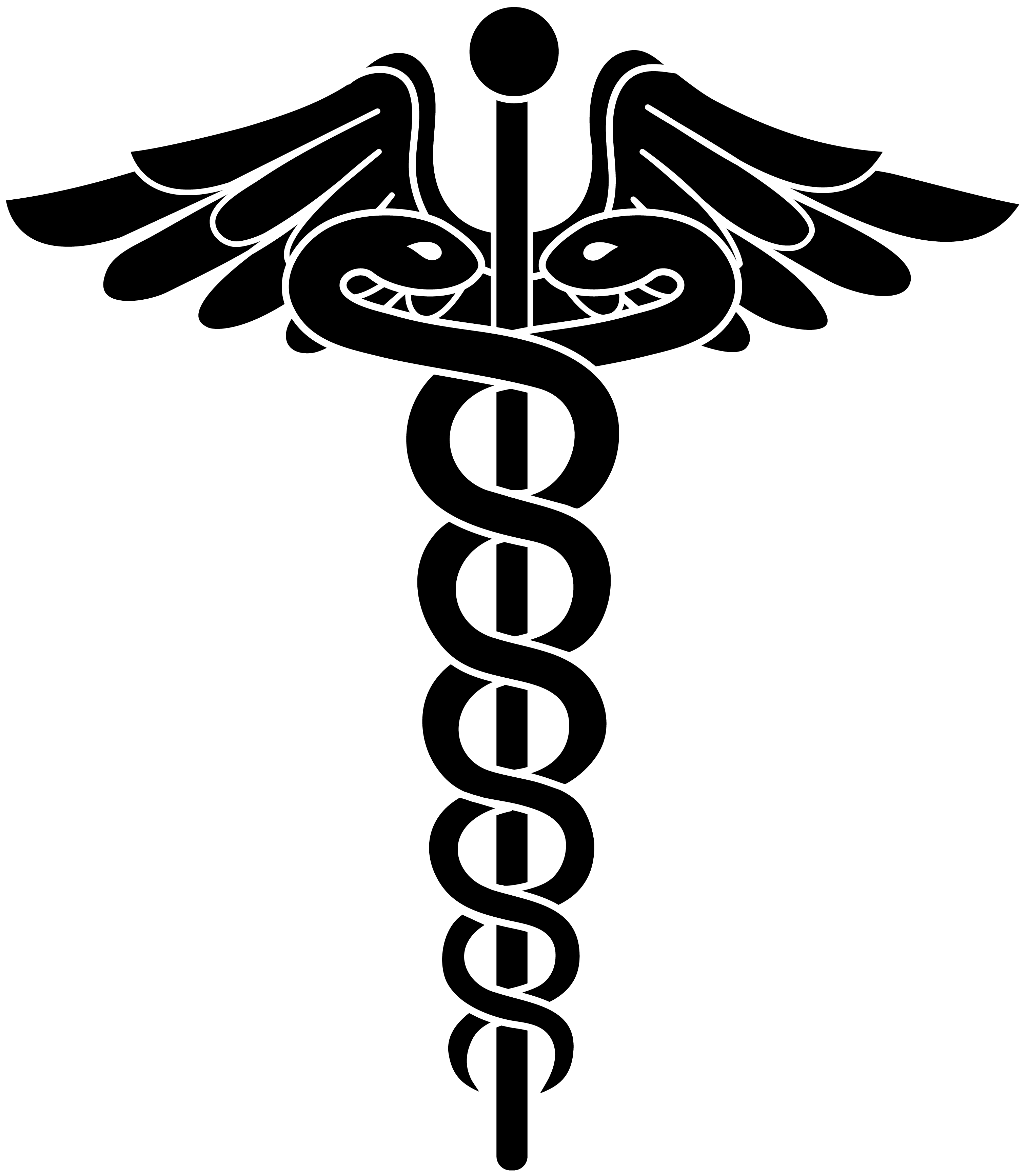 3029x3469 Doctor Symbol Png Transparent Doctor Symbol.png Images. Pluspng