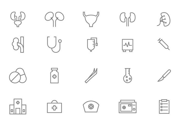 700x490 Free Urology And Medical Vectors