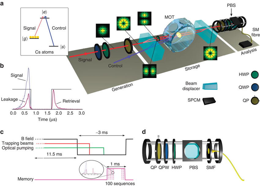 850x608 Multiple Degree Of Freedom Quantum Memory For Vector Beam Storage