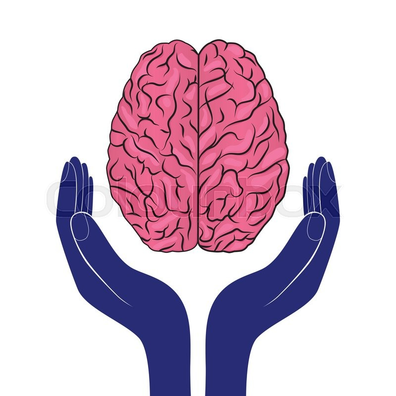 800x800 Mental Health Sign Vector Human Brain As Concept Stock Vector