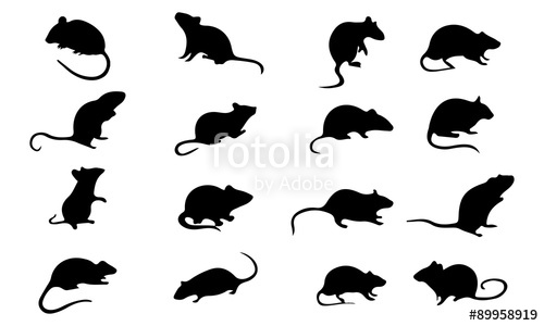 500x300 Mice Mouse Silhouette, Set Vector Animals Icons Stock Image And
